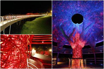 台東【國際地標】。海濱公園的生命之樹,值得夜遊的美麗景點